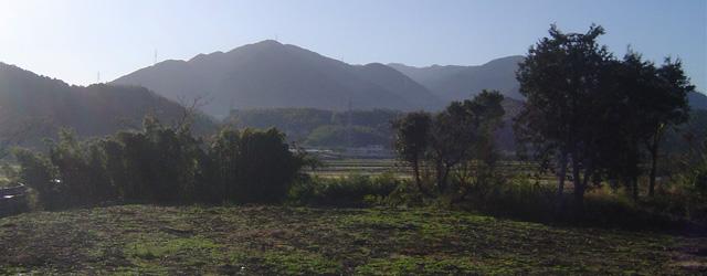 出水市向江町の不動産分譲地