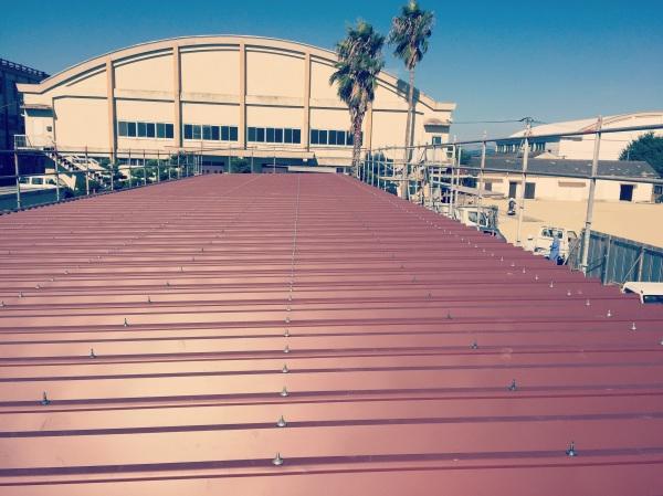 部室新築折板屋根