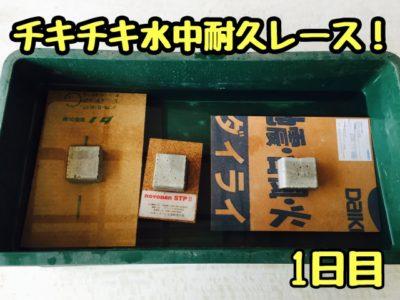 【耐力面材】チキチキ水中耐久レース!